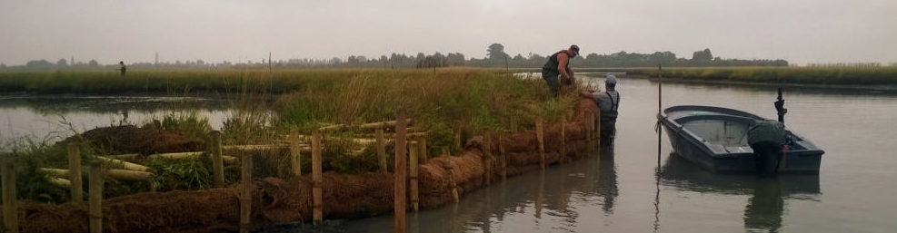 Bioengineering, stakeholder participation and ecosystem services valuation protect salt marshes in the lagoon of Venice