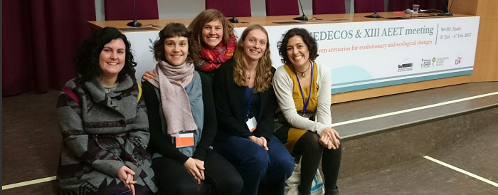 BWG 5 members participated at the XIV MEDECOS & AEET meeting in Seville, January 2017