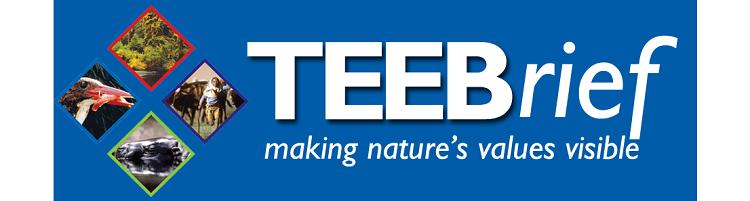 New issue of TEEB newsletter: TEEBrief