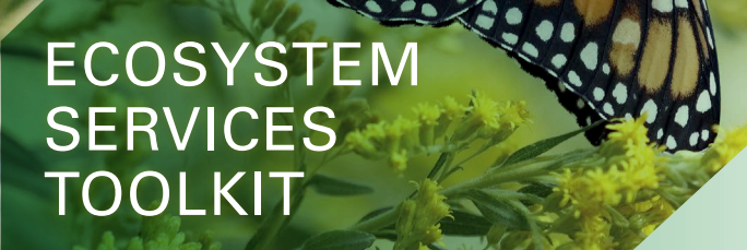 Ecosystem Services Toolkit