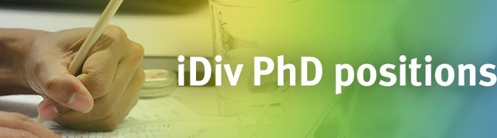 iDiv PhD positions in biodiversity research CALL OPEN