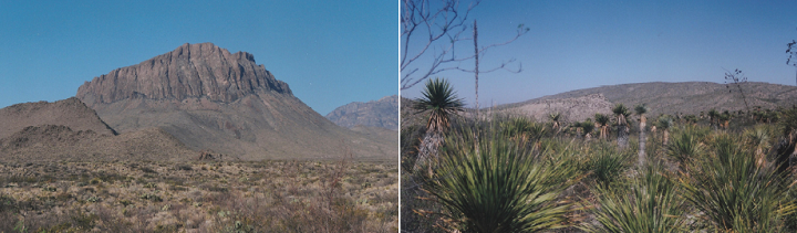 New paper on desert ecosystem services