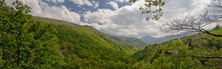Workshop: Restoring Landscapes to Improve Freshwater Ecosystems