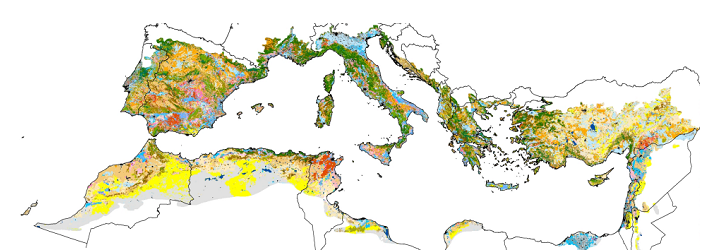 Global change effects on land management in the Mediterranean region