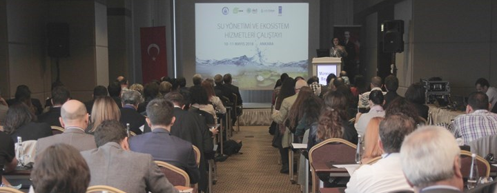 DKM Workshop: Water Management and Ecosystem Services
