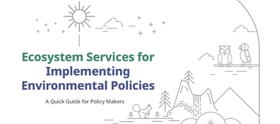 A quick guide to implementing ES approaches for policy makers