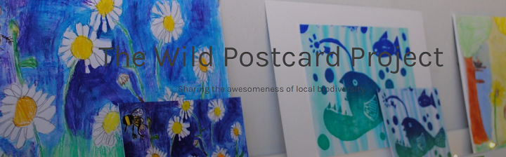 The Wild Postcard Project – art competition aims to showcase Irish and Dutch biodiversity