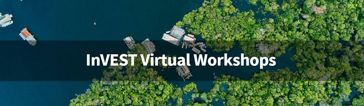 InVEST Virtual Workshops