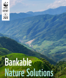 Bankable Nature Solutions: Solutions from across the globe to adapt to and mitigate climate change and to help our living planet thrive