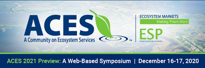 Announcing ACES 2021 Preview: A Web-Based Symposium
