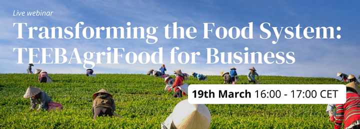 Invitation to join WVN session: Transforming the food system